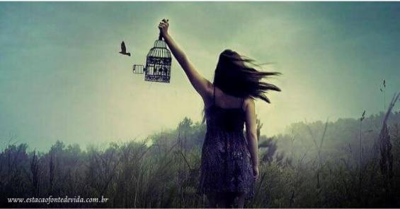 Solitute - Encontre a paz e a felicidade em seu interior